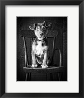 Framed Mutt Black & White