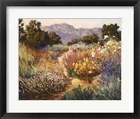 Framed Spring Trails