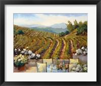 Framed Vineyards to Mount St. Helena