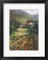 Framed Tuscany Vineyard