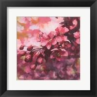 Framed Blossoms #1