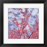 Framed Blossoms #3