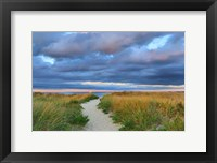 Framed Jetties Beach Path