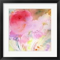 Framed Pink Whisper