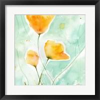 Framed Precious Poppies