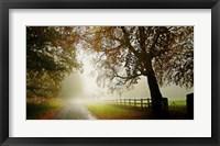 Framed Fog