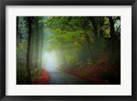 Framed Lane