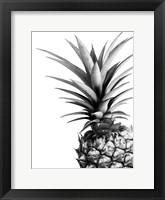Framed Pineapple (BW)