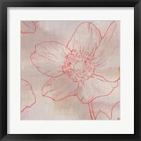 Framed Anemone II