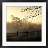 Framed At Dawn
