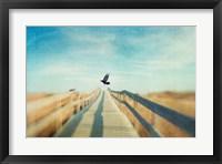 Framed Fly