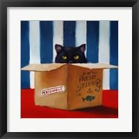 Framed Cat Burglar