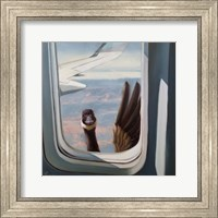 Framed Friendly Skies