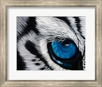 Framed Tiger Eye