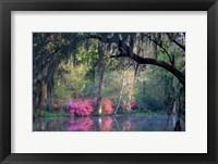Framed Morning Serenity