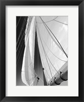 Framed Sailboat Sails Florida