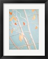 Framed Trees with Orange Leaves