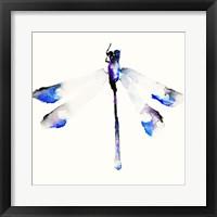Framed Blue & Violet Dragonfly