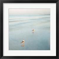 Framed Two Birds on Beach