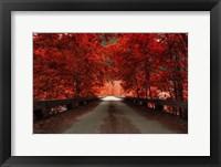 Framed Bridge (Red)