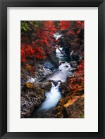 Framed Water in the Fall