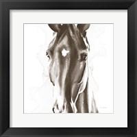 Framed Le Cheval Noir Brown Crop
