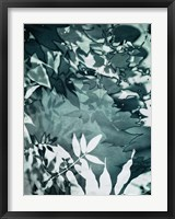 Framed Abstract Leaves