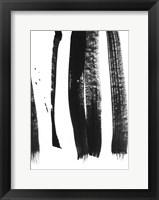 Framed Black on White 3