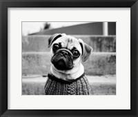 Framed Cleo