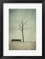 Framed Cherry Tree - Winter
