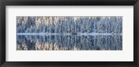 Framed Winter Silence