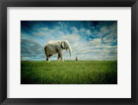 Framed Elephant Follow Me