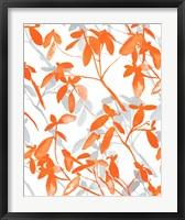 Framed Premonition Orange