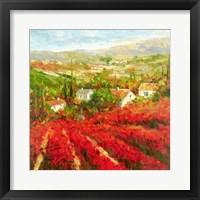 Framed Bourgogne