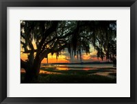 Framed Savannah Evening