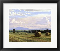 Framed Fresh Cut Hay
