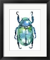 Framed Chromatic Blue Beetle