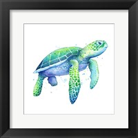 Framed Green Sea Turtle