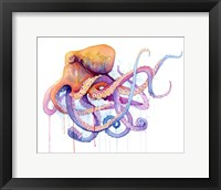 Framed Octopus 2