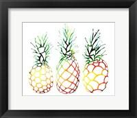 Framed Retro Pineapples