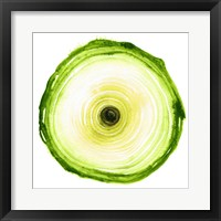 Framed Tree Ring - Chartreuse