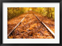 Framed Train Tracks in The Fall