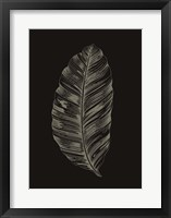Framed Black Leaf