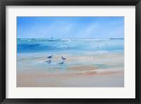 Framed Late Gulls