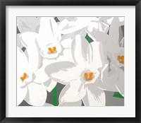 Framed Paperwhites