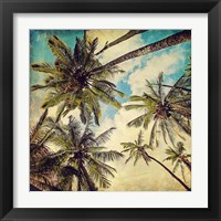 Framed Kauai Island Palms