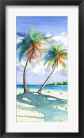 Framed Palm Shadows