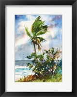 Framed Ocean Breeze