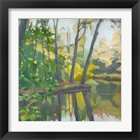 Framed Wooded Pond