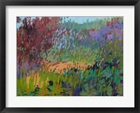 Framed Color Field No. 72